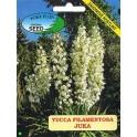 /BS/ YUCCA filamentosa 8 semen
