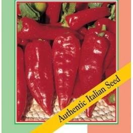 PAPRIKA Rubens Lungo Rosso (Capsicum annuum) 10 semen