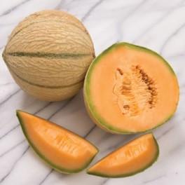 MELOUN cukrový Escorial F1 (Cucumis melo) 2 semena