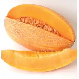 BIO MELOUN Sweet Granite Cantaloupe/Muskmelon  (Cucumis melo) 5 semen