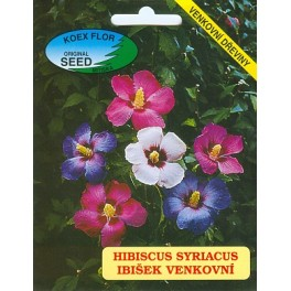 /BS/ HIBISCUS syriacus 30 semen