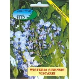 /BS/ WISTERIA sinensis 2 semena
